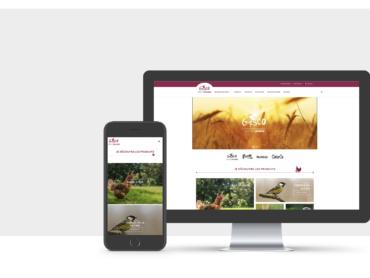 Création du site internet Gasco par l'agence de communication Nowooo